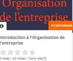 Cours Initiation à l'organisation de l'entreprise